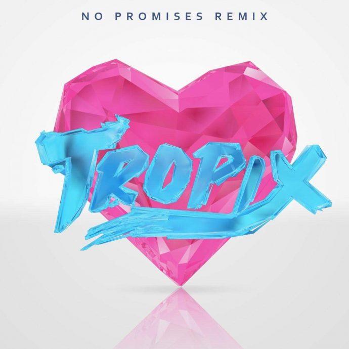 Cheat Codes - No Promises feat. Demi Lovato (Tropix Remix)